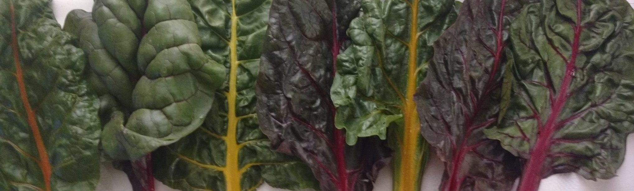chard used for dairy-free swiss chard